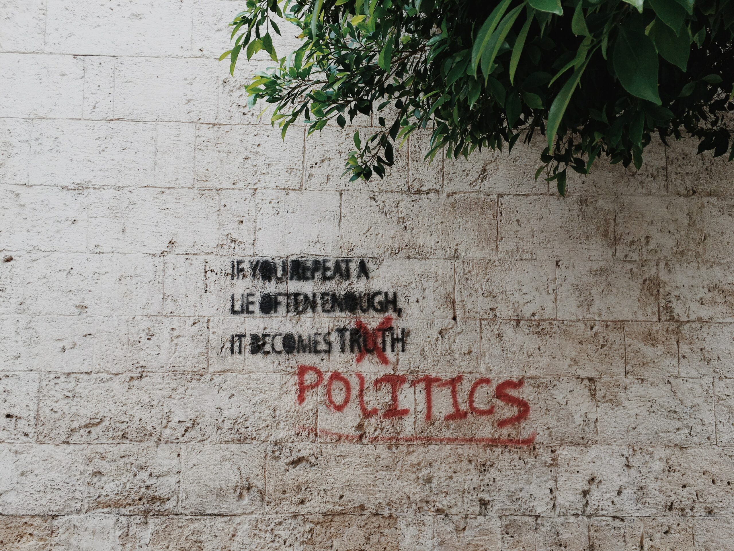 If you repeat a lie often enough it becomes truth printed wall taken at daytime
